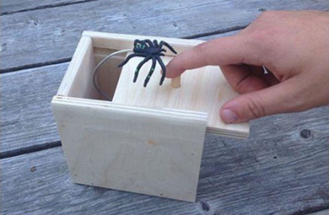 Halloween-decoración-araña-broma