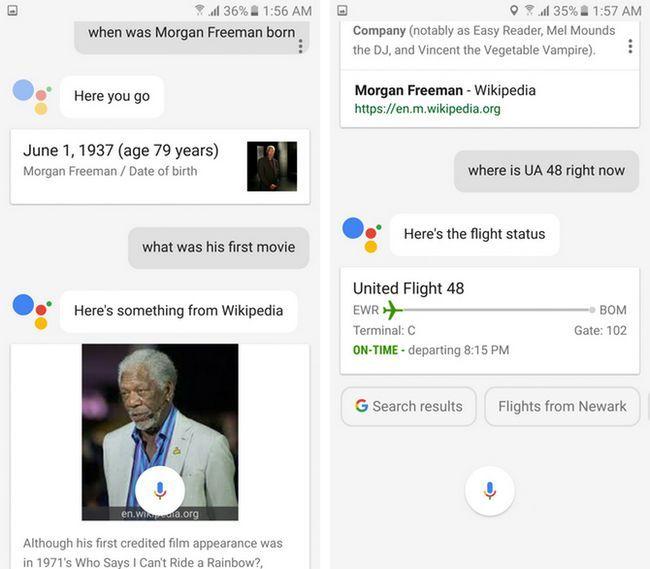 el estado del vuelo gráfico asistente conocimiento Google