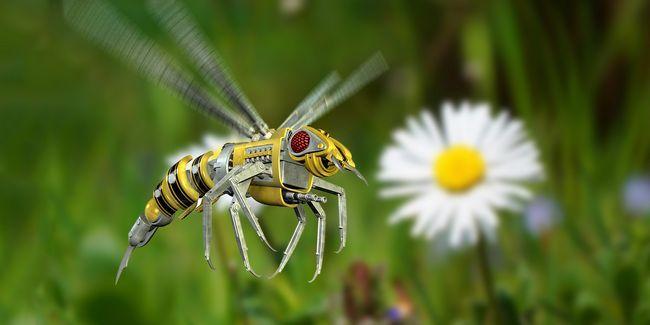 3 Maneras aviones no tripulados del futuro serán como los insectos