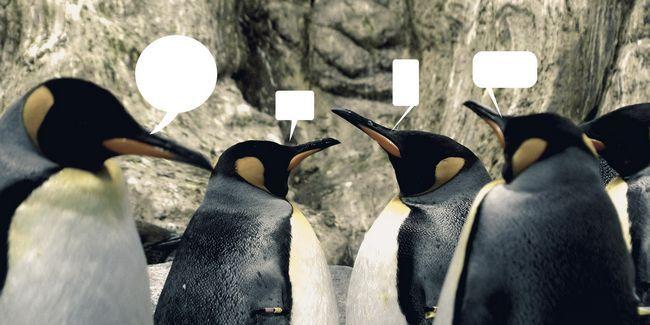4 Comunidades útiles para los nuevos usuarios de linux