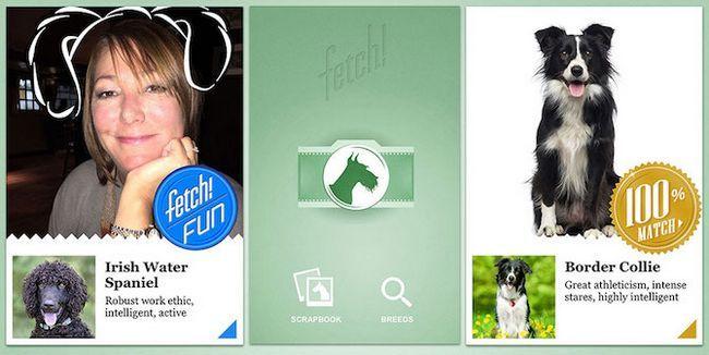 Aplicaciones Microsoft ¿Qué perro Fetch