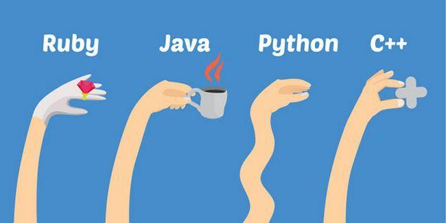 python-razones-limpia