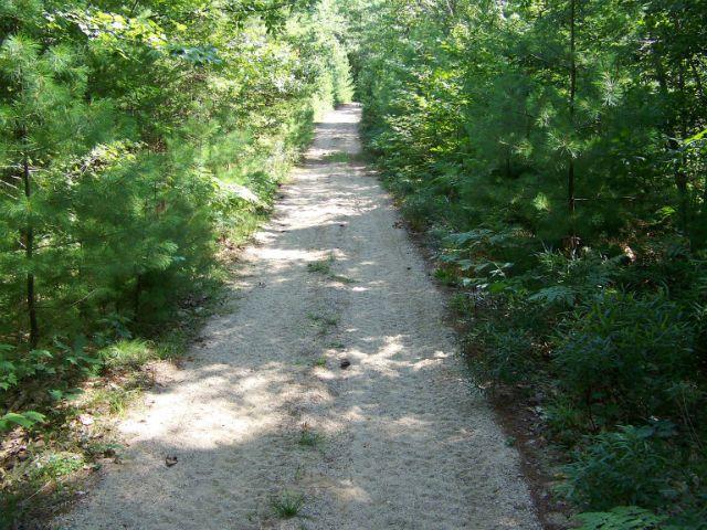 path-Bad1