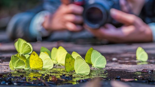fotografía-razones-perspectiva