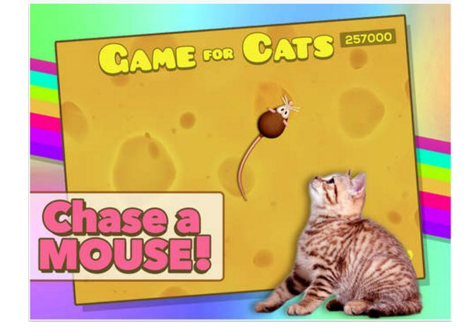 Juego para los gatos