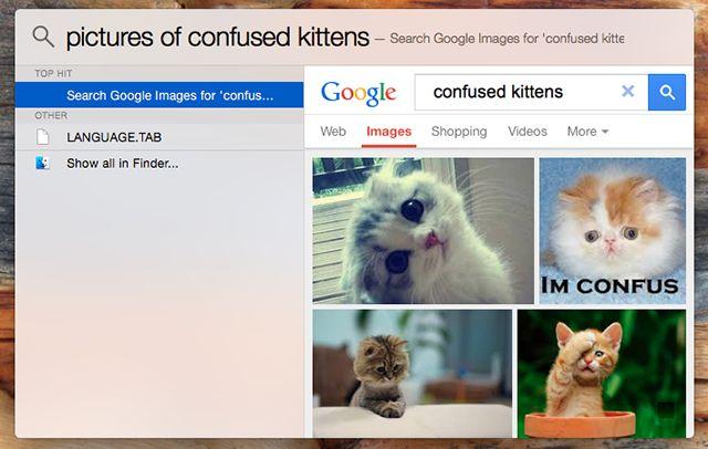 spotlight-plugins-linterna-imagen-búsqueda