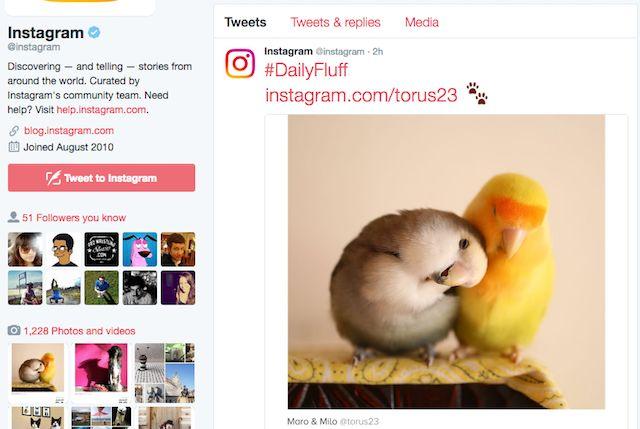 Chrome Twitter Extensión InstaTwit