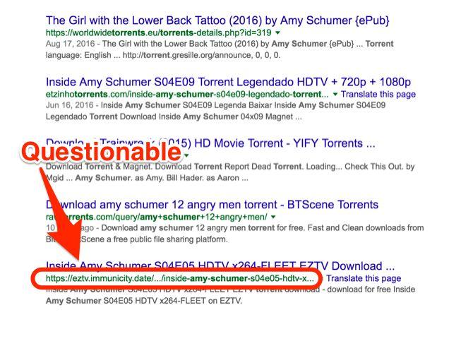 URL Amy Schumer Torrent