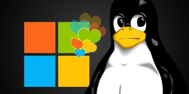 ¿Microsoft realmente me gusta linux, después de todo?
