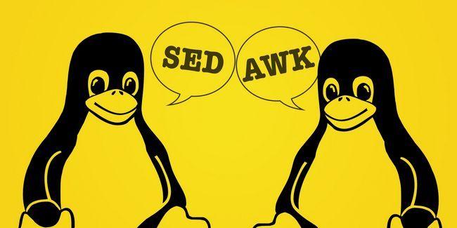 Todo geek linux necesita saber sed y awk. Este es el por qué…