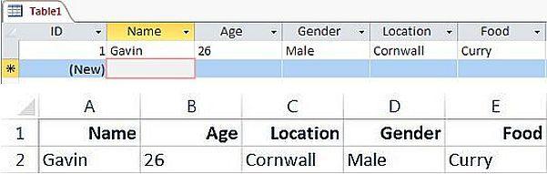 MS Access / MS Excel ScreenCap