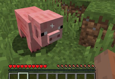 minecraft_swine