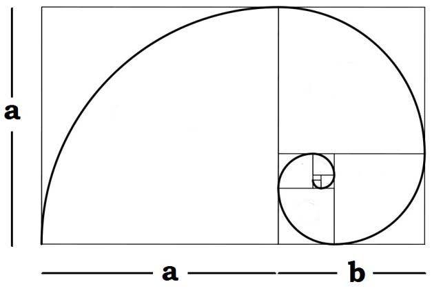 fotografía-reglas-composición-oro-espiral