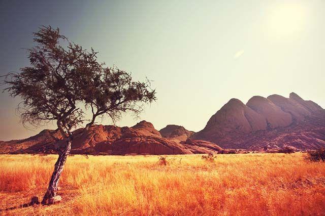 fotografía-reglas-composición-plano-desierto