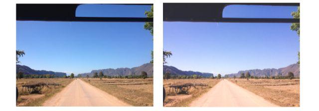 Antes y después de la foto de la vendimia