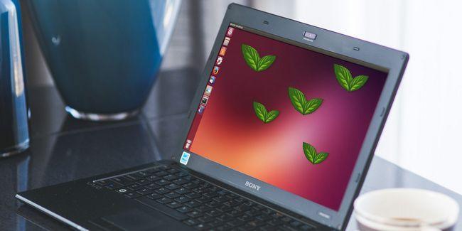 Como instalar x-aplicaciones linux de menta en ubuntu