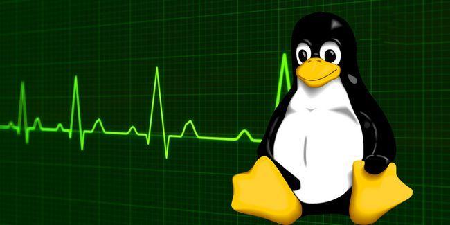 Cómo matar a los programas y comprobar la información del sistema en linux