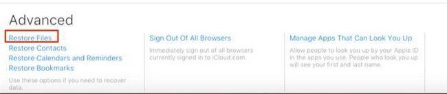 Restaurar archivos iCloud