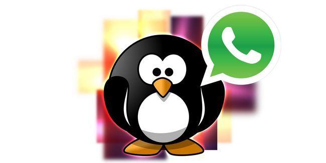 Cómo ejecutar whatsapp en ubuntu usando genymotion, bluestacks y más