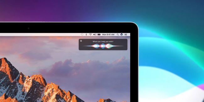 Cómo utilizar siri en tu mac: una guía de inicio rápido