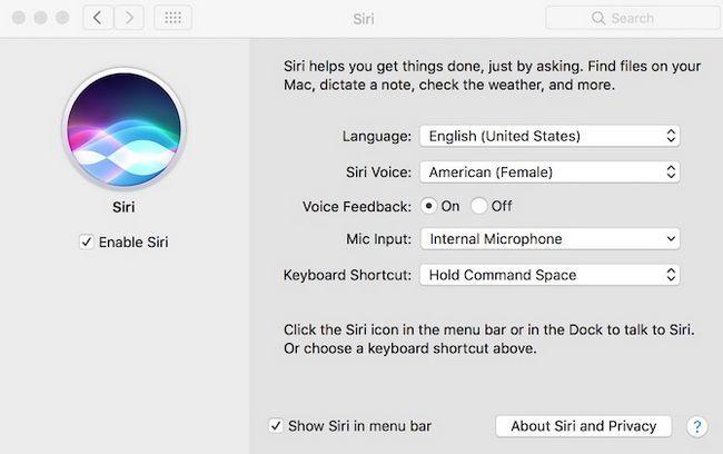 Ajustes Siri en MacOS Sierra