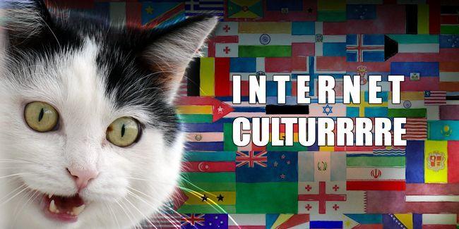 Es la cultura de internet diferentes en otros países?