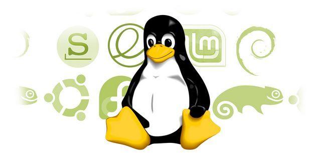 El cambio a linux? Aquí es cómo elegir la distribución correcta