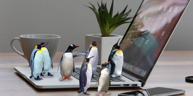 El mejor software de fuente abierta sólo para mac