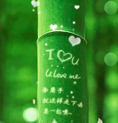 iPhoneWalls bambú verde Fondo iPhone