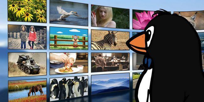 El estado actual de los servicios de transmisión de video en linux