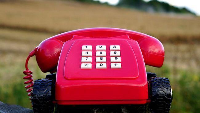 Rosa teléfono fijo viejo