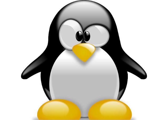 Linux-pingüino