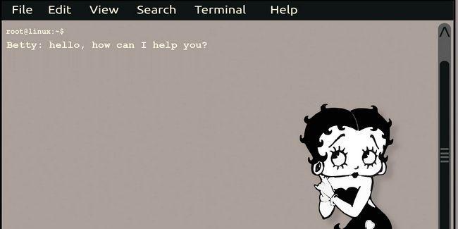 Use un lenguaje natural con betty, su asistente digital en el terminal de linux