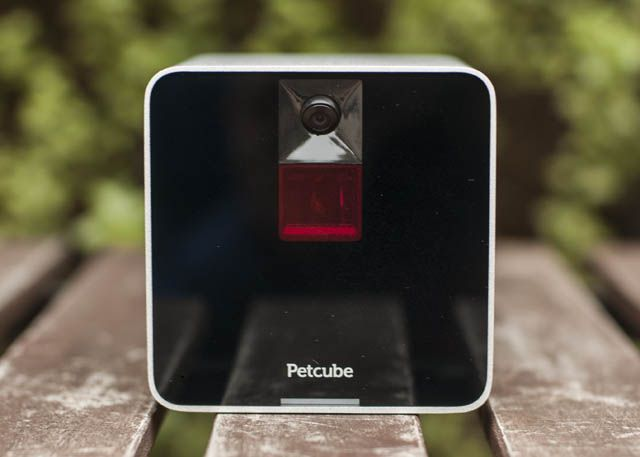 Petcube3