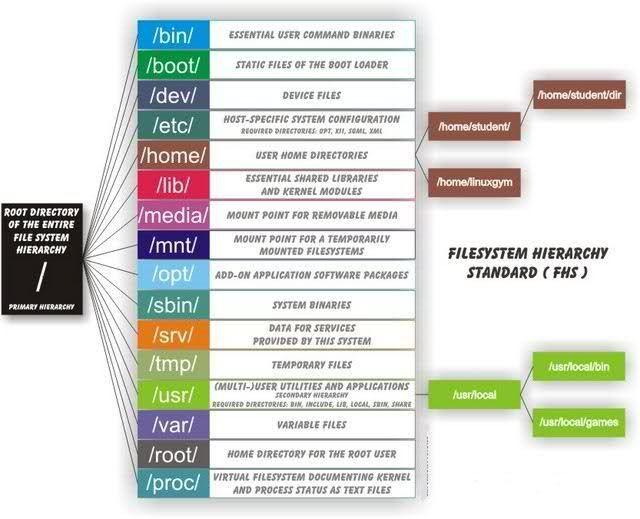 LinuxFilesystem-Directorio