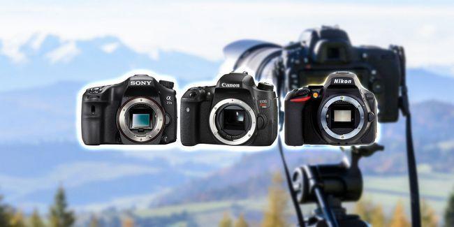 ¿Cuál es la mejor cámara réflex digital para su dinero en 2017
