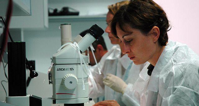 microscopio de experimento